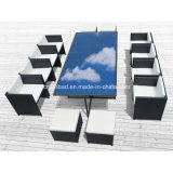 Outdoor Wicker Dining Set for Garden with 8 Seater / SGS (8219-5)