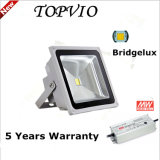 Outdoor IP65 Low Luminous Decay Bridgelux/Osram/CREE LED Floodlight 50W