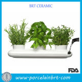 Hot Sale White Ceramic Trio Pot