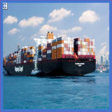International Forwarder From China to Vancouver, Canada (IC1-14)