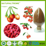 Chinese Traditional Herb Goji Extract Polysaccharide Powder