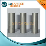 Tungsten Carbide Stamping Dies Forging Dies for Screw and Bolts