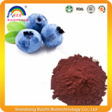 Nutritional Food Blueberry Extract Powder
