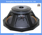 "21"" Professional Audio for Professional Loudspeaker Subwoofer"
