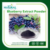 Health Care Product Blueberry Extract Anthocyanidins10%-25% Blueberry Extract Powder by HPLC