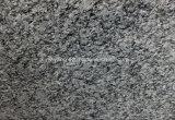 Spray White Spoondrift White Granite Slab for Decoration/Countertop