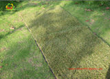 Natural Looking Autumn Synthetic Grass for Garden