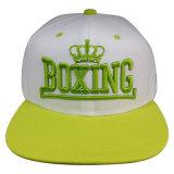 Hot Sale Custom Cap with Logo Sk1630