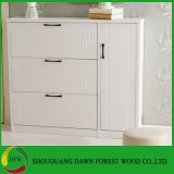 Home Furniture Shoe Storage Cabinet