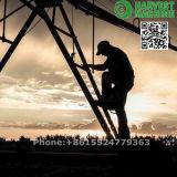 Good Performance Center Pivot Irrigation Machine/Agriculture Irrigation System