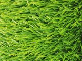Most Popular Artificial Grass Synthetic Turf
