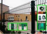 PVC Coated Ornamental Wrought Iron Garden Fence (XM52)