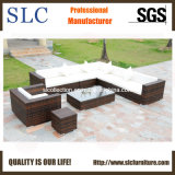 Rattan Outdoor Sofa, Rattan Wicker Sofa, Plastic Garden Sofa (SC-B6018)