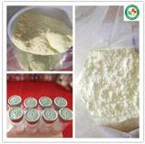 99.5% Salbutamol Sulfate / Albuterol Sulfate for Bronchial Asthma CAS: 51022-70-9