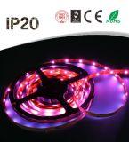 Factory Price 12V 5050 LED Strip