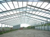 Prefabricated Steel Structure Horse Riding Arena