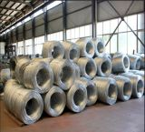 Galvanized soft binding wire/galvanized iron wire