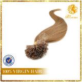 Nail Tip Human Hair (N18)