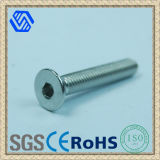 Stainless Steel Hexagon Socket Countersunk Head Screws (BL-0035)