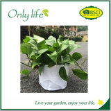 Vegetables Growing Tub Patio Recycled Bag