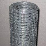 Low Price 3/8 Inch Galvanized Welded Wire Mesh Roll