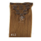 Straight Clip in Human Hair Extensions 7A Human Hair Brazilian Virgin Hair Clip in Extension
