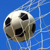 Knotless Net/Sports Net/Football Nets