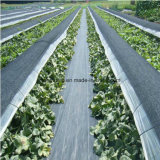 PP Weed Control Mat with UV