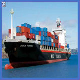 Ocean Shipping & Storage From Guangzhou to USA
