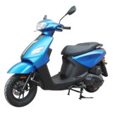 China New 125cc 150cc 100cc YAMAHA Type Gas Scooter for Adult (Jog-X)