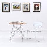 Wholesale Moddern Metal Cafe Restaurant Furniture Set (SP-CT778)