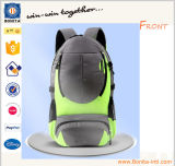 2016 Factory Wholesale Good Price Outdoor Hiking Backpack