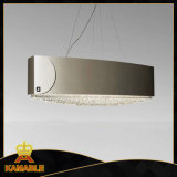 Customized Hanging Decorative Stainless Steel Pendant Lamps (KA00333)