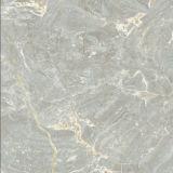 600X600mm Shiny Glazed Polished Tiles Qdp6982
