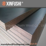 F17 Formwork Plywood with As6669 (Australia Market)