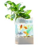 Mini USB Fish Tank LED Acrylic Aquarium