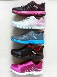 New Style Women Running Shoes Sport Shoes Sneaker (ZJ150518-1)