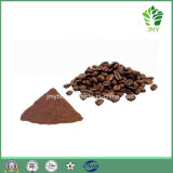 Hot Selling 100% Natural Organic Cocoa Powder Price