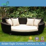 Cane Furniture with Aluminum Tube Modern Sofa Bed