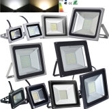 30W COB LED Project Light with 2years Warranty