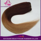 Ombre Color Russian Favor European Quality Hair Weft