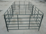 Professional Supplier of Cattle Panel