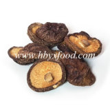 Agricultural Food Dried Smooth Shiitake Mushrooms Sale with Low Price