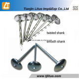 Umbrella Head Roofing Wire Nails Twisted Shank