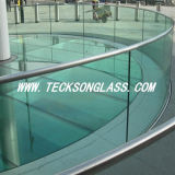 Curved or Flat Tempered Swimming Pool Glass Fencing Panels