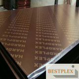 Joint-Finger Film Faced Plywood, Construction Plywood, Film Faced Plywood