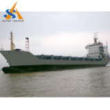 14000dwt Bulk Carrier Cargo Ship