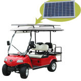 Utility Vehicle with Solar Panel (DEL3022G2Z, 2+2-Seater)