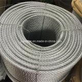 Galvanized Steel Wire Rope /Steel Wire Rope