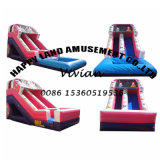 Summer Park Inflatable Water Slide with 2 Use
